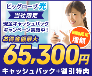 最大で合計65,300円オトク!2年プランでも3年プランでも、ネットのみの申込みでもオトク!